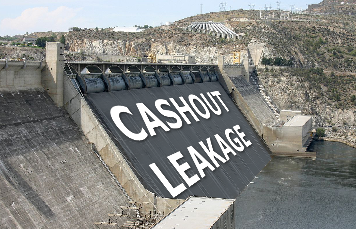 The Fundamentals of 401(k) Cashout Leakage video